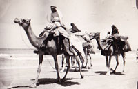 3 arabs on camels in desert